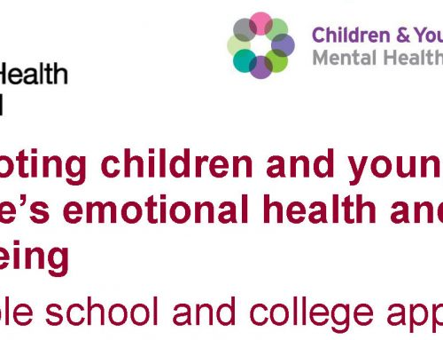 Promoting children and young people's emotional health and wellbeing