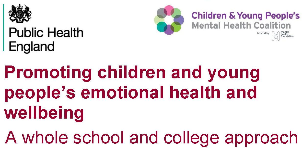 Emotional Well Being Of College >> Promoting Children And Young People S Emotional Health And Wellbeing