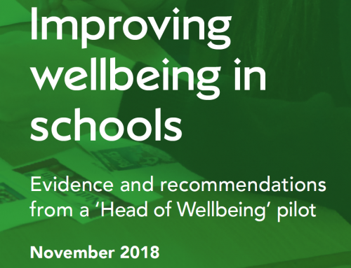 A Head of Wellbeing in Schools?