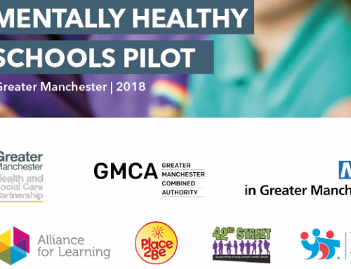 Mentally Healthy Schools Pilot report