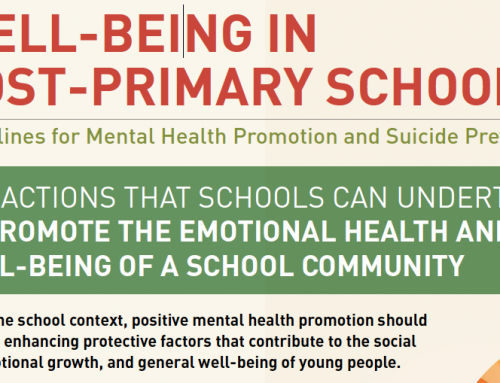 Wellbeing in Post-Primary Schools